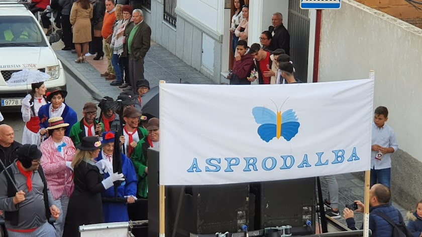 Miembros de Asprodalba participando en los recientes carnavales veratenses.