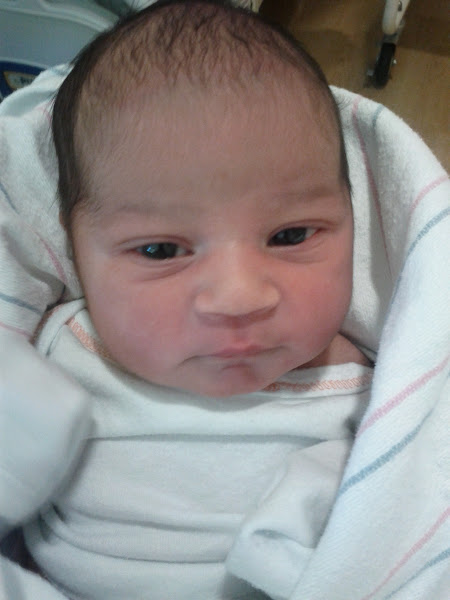 Photo: 12 hours old