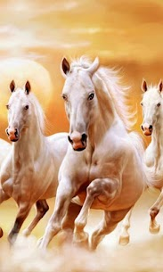 Horses Live Wallpaper – backgrounds hd 15.0 APK with Mod + Data 2