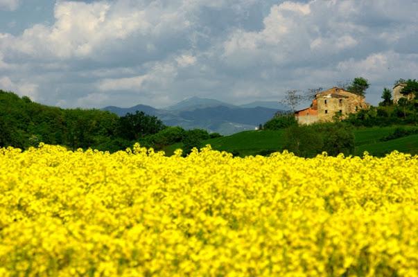 Paesaggio italiano di gianni87