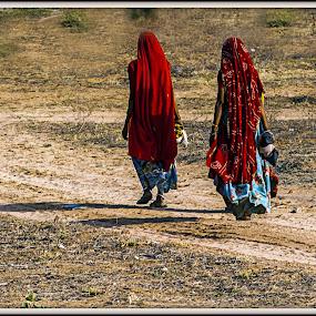 DESTINY by Debasis Banerjee - People Street & Candids ( village women, village folk, village, rajasthan, indian women, india, women, rajasthani ladies,  )