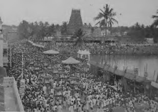 Photo: Mylapore - Kapaleeswarar temple festival