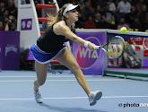 Belinda Bencic en Anastasia Pavlyuchenkova spelen de finale in Moskou.