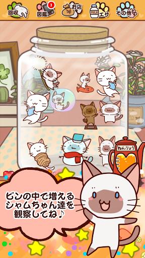 玩免費休閒APP 下載かまってシャムちゃん研究所 app不用錢 硬是要APP