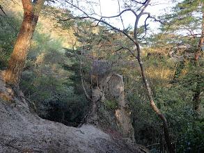 岩が見られだす