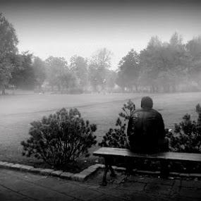 Alone by Marta Bednarska - People Portraits of Men ( fog park )