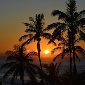 Sunrise by Melody Pieterse - Landscapes Sunsets & Sunrises (  )