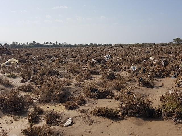 El agua arrastró una ingente cantidad de plásticos.