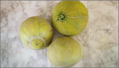 "Photo: Pepenasi sau pepenei sau pepene galben sau ""pepeni RO"" (Cucumis melo) - BUNI ! - de pe Calea Victoriei, zona Materna magazin de legume-fructe - 2017.06.15"