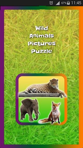 Wild Animals Pictures Puzzle