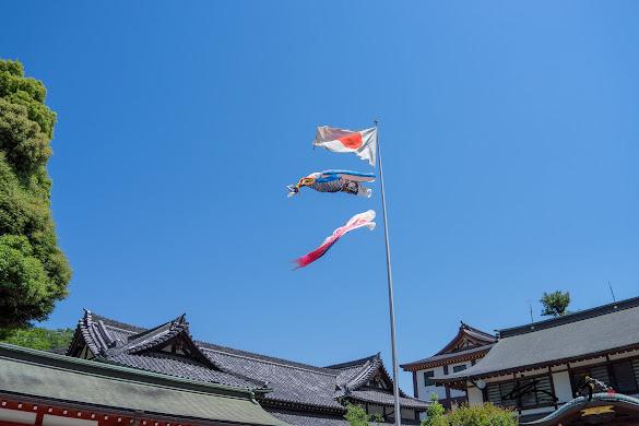 日本国旗&鯉のぼり