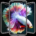 Betta Fish Wallpapers icon