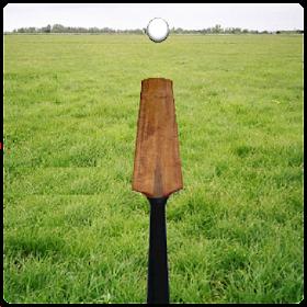 Cricket Tuk Tuk
