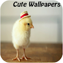 Cute Wallpapers icon