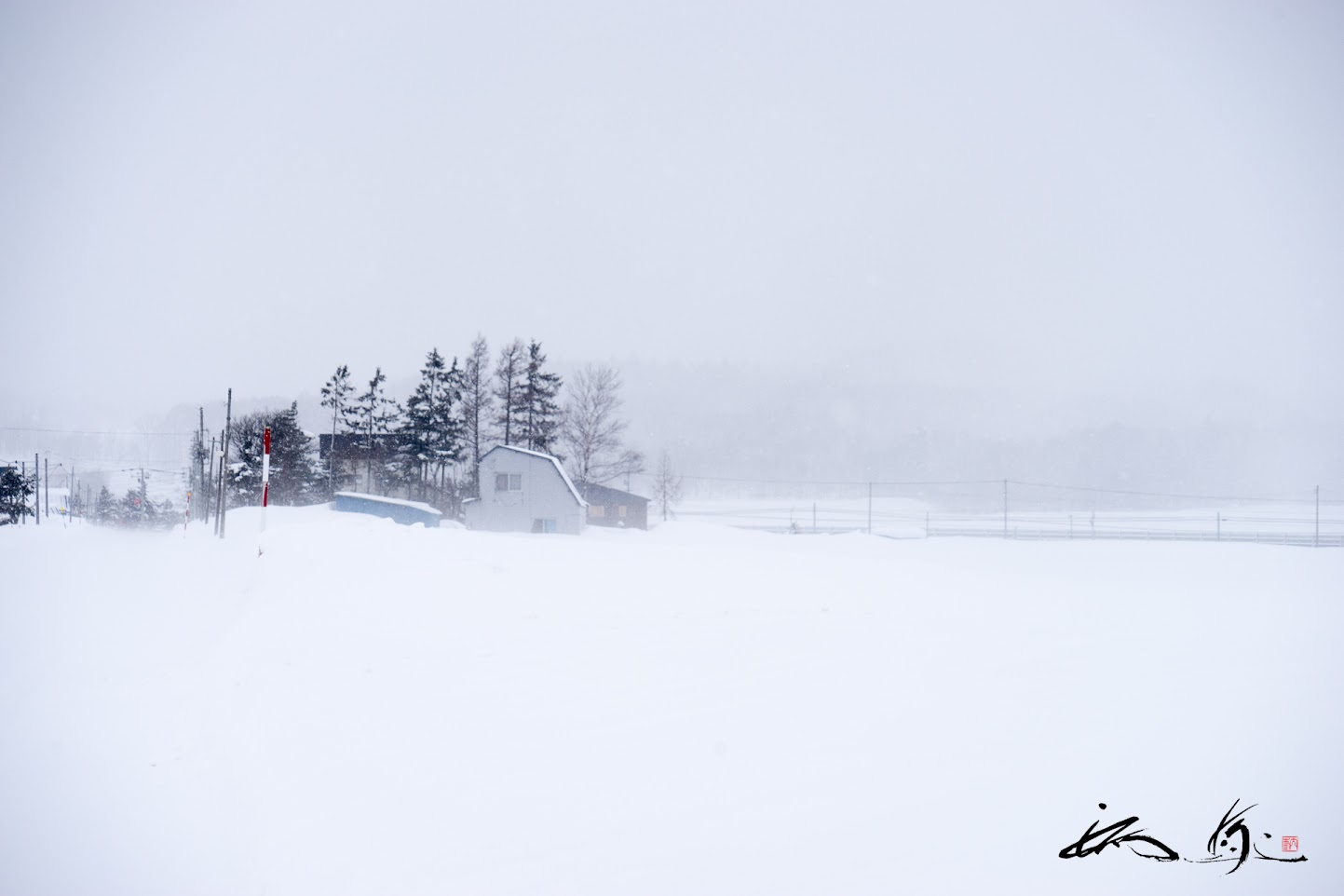 吹雪舞う白い風景
