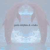 Gentle Dolphins & Whales