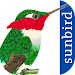 All Birds Colombia - A Sunbird Field Guide Icon