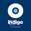 Reporte Indigo Monterrey