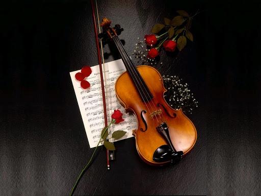 Violin Wallpaper 1.0 screenshots 7