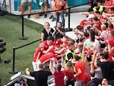Plusieurs supporters hongrois interdits de stade pour deux ans