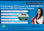 Get Advance Knowledge Of E-Accounting course In Delhi