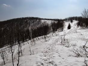 Photo: 20.Przed nami Szczawnik (1098 m).
