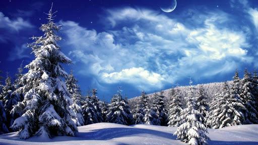 免費下載個人化APP|冬季壁纸2016年 app開箱文|APP開箱王