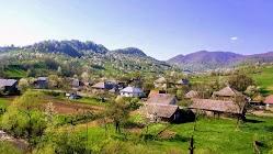 Тихие села