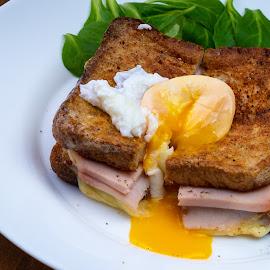 Late dinner by Bogdan Rusu - Food & Drink Plated Food ( toast, bread, egg, plate, food )