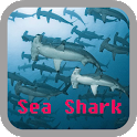 Sea Shark wallpaper icon