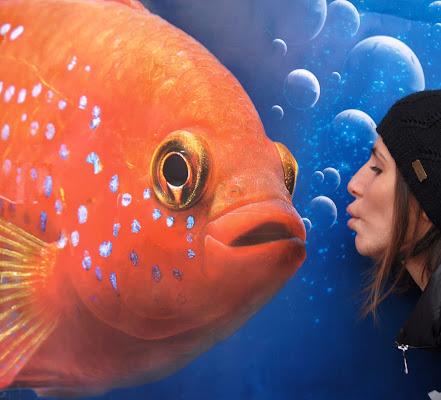 Nemo kiss di Zerosedici