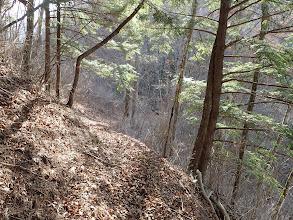 落ち葉で滑りやすく注意