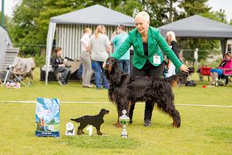 Photo: Gebruikshondenklas reuen / Working class dogs - Irving John Beautiful Darkness