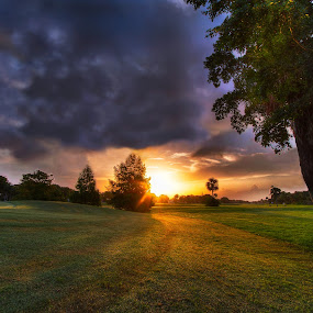 Coming Around by Nemanja Stanisic - Landscapes Sunsets & Sunrises ( road, landscape, pretty, sun, leaving, course, sky, tree, drive, shadow, dark, path, golf, sunshine, slow, alone, evening, clouds, hdr, grass, beautiful, scenic, morning, prairie, dusk, rays, around, trays, field, amazing, dawn, sunset, magical, coming, meadow, sunrise, scenery )