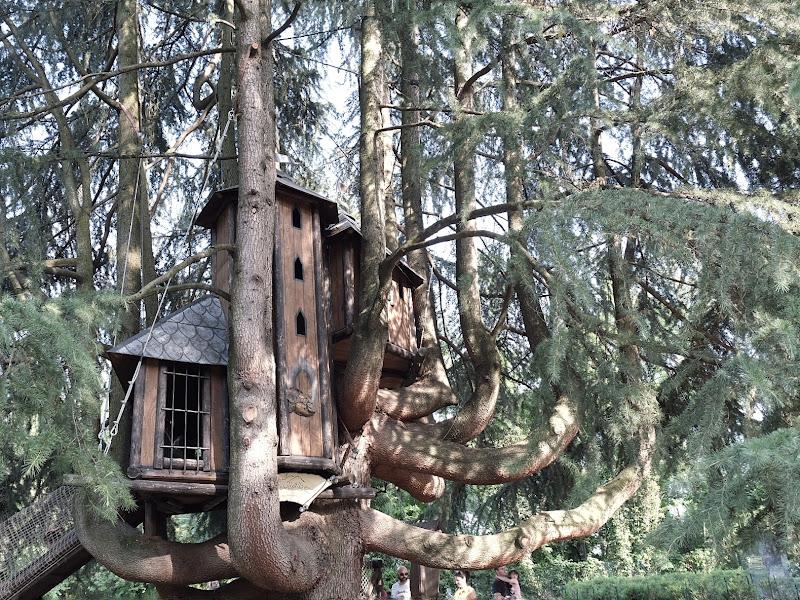 La casa sull'albero di ciccia74