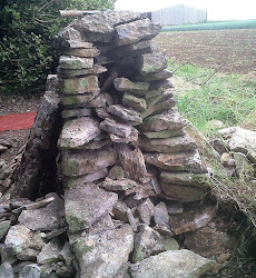 Gap repair of dry stone wall
