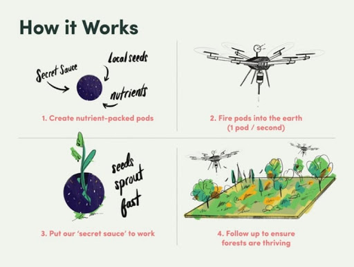 Toronto-Based Start Up Is Combatting Deforestation With Tree-Planting Drones
