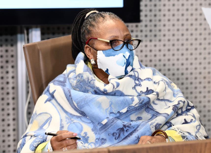 Defence ministry unmasks fraudsters soliciting bids for 'PPE tender' - SowetanLIVE