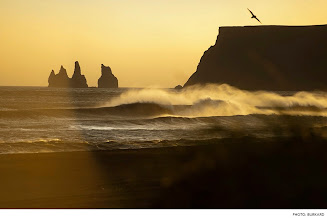 Photo: Photo of the Day: Iceland. Photo: Burkard  #Surfer  #SurferPhotos   Click for more surf photos: http://bit.ly/16YUIae