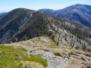 Photo: Beginning to descend the south ridge of Pine Mt. toward the Pine/Dawson saddle