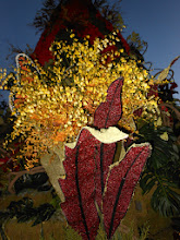 Photo: Pasadena Rose Parade 2013  Kwanis Float Love the Red Beans