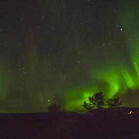The dance of nature by Ricky Friskilæ - Landscapes Weather ( sandnes, peaceful, autumn, p, aurora borealis, finnmark )