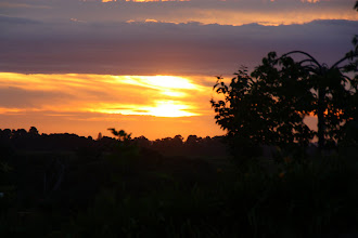 Photo: Year 2 Day 140 - Sun Set in the Yarra Valley Countryside #2
