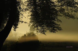 Photo: Morgennebel