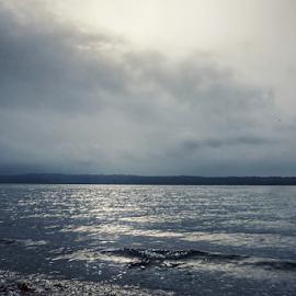 Puget Sound  by Todd Reynolds - Landscapes Weather