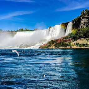 Niagara Falls by Sharon Leckbee - Landscapes Waterscapes ( waterscape )