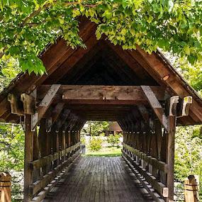 Naperville, IL., Riverwalk by Nancy Gray - Buildings & Architecture Bridges & Suspended Structures