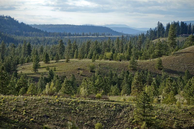 Photo: Riverside State Park, Spokane, WA
