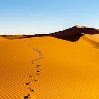 Verso la cima... della duna. di