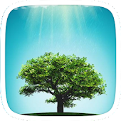 Green Tree Theme